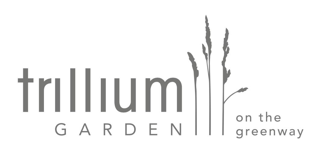 The Trillium Garden on the Greenway Opens Today!