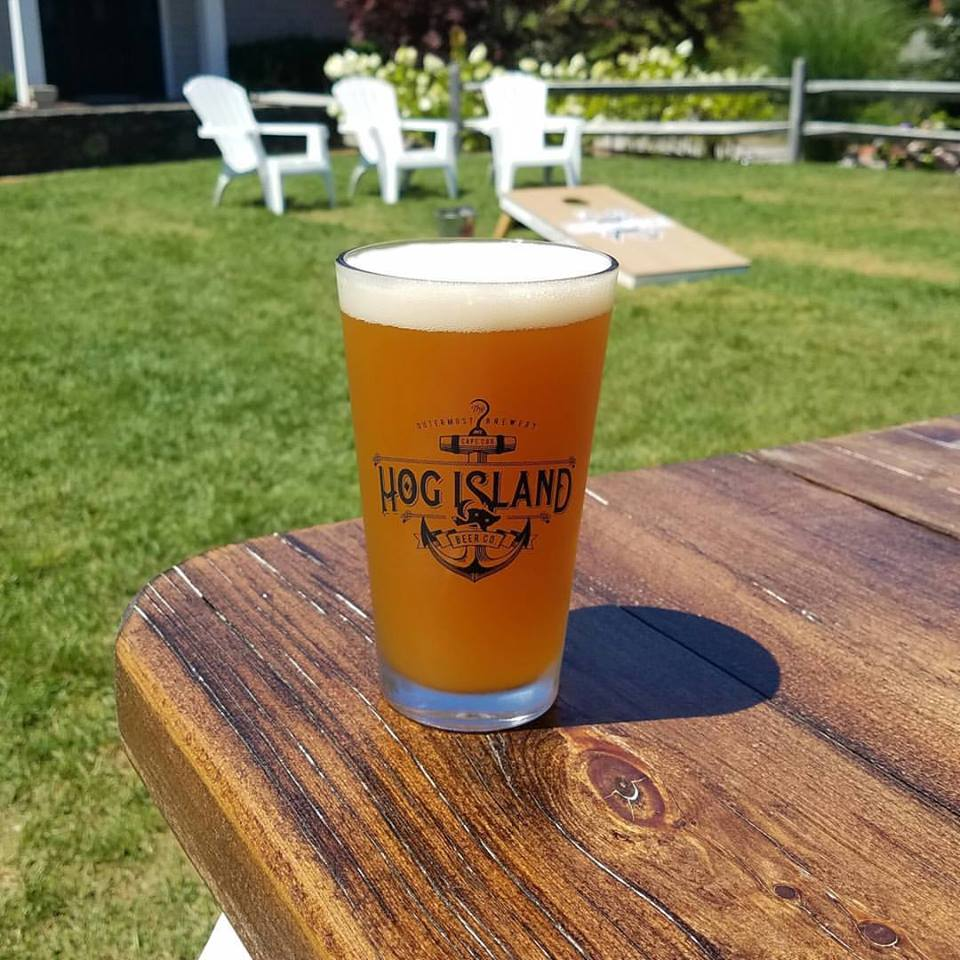 Hog Island Beer in Orleans Massachusetts on Cape Cod
