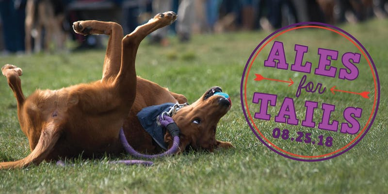 Ales for Tails Portland Maine dog-friendly craft beer festival