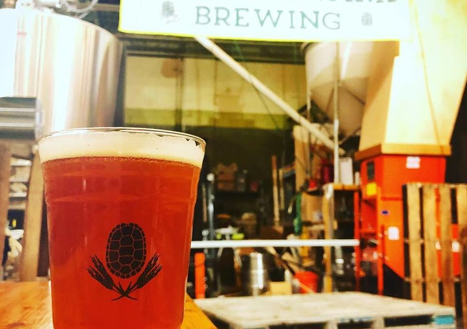 Turtle Swamp Brewing Will Hold A Pop-Up Beer Hall at Roslindale Substation