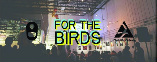 "Aeronaut Brewing Co. and Mass Audubon to release ""For The Birds"" IPA"