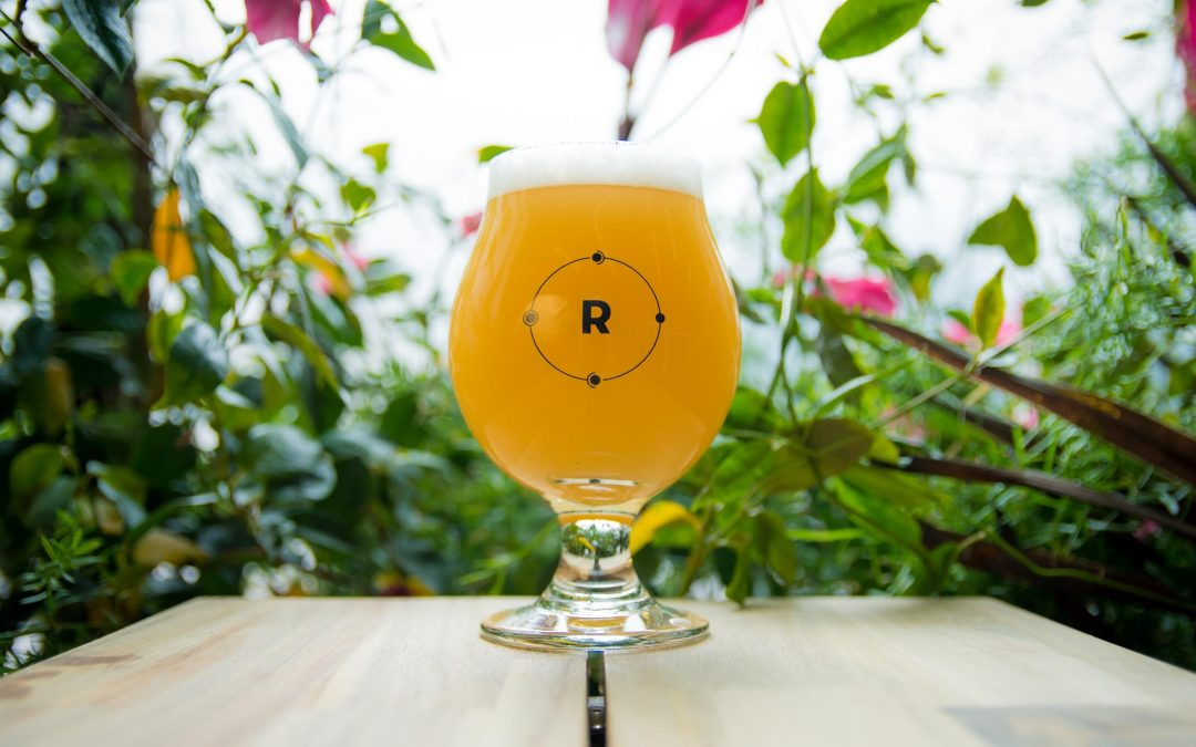 Happy National IPA Day from Remnant Brewing